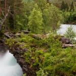 Norwegen 2012 - Gjestegård